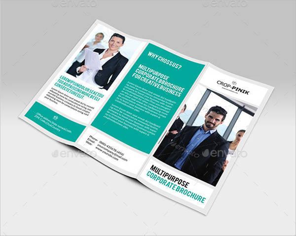Company Portfolio Tri-Fold Brochure