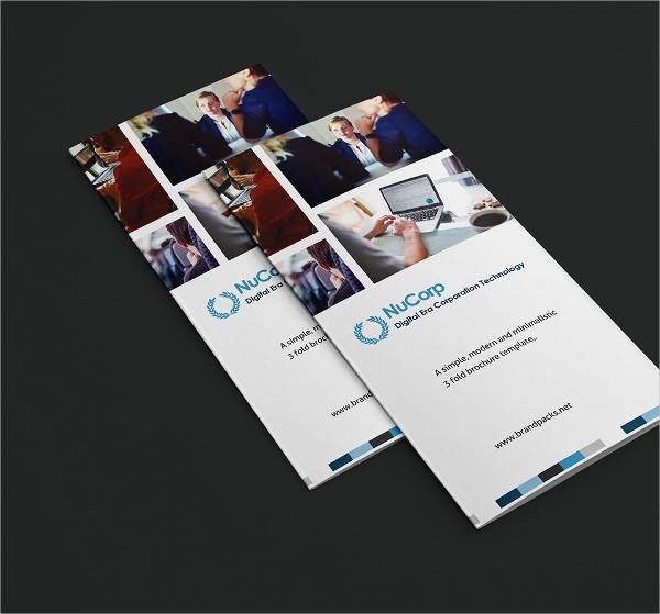 corporate company illustrator brochure