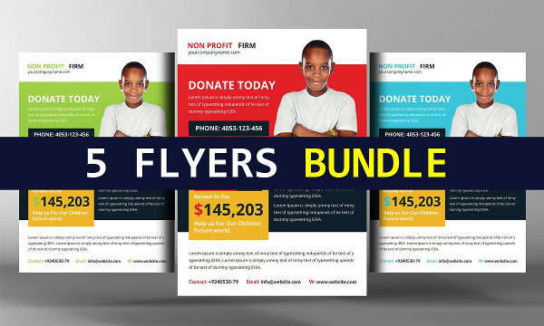 Donation Flyer Bundle