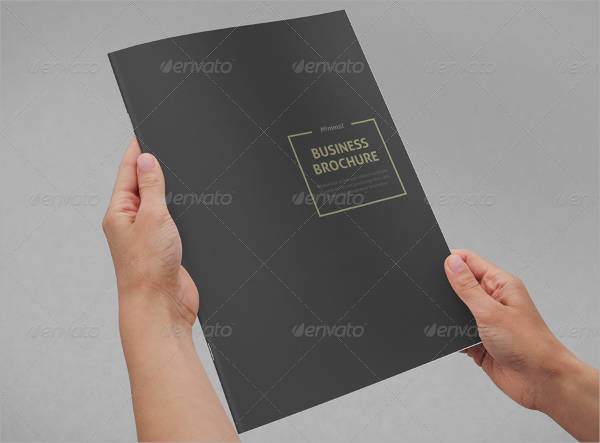 Minimal Business Brochure INDD