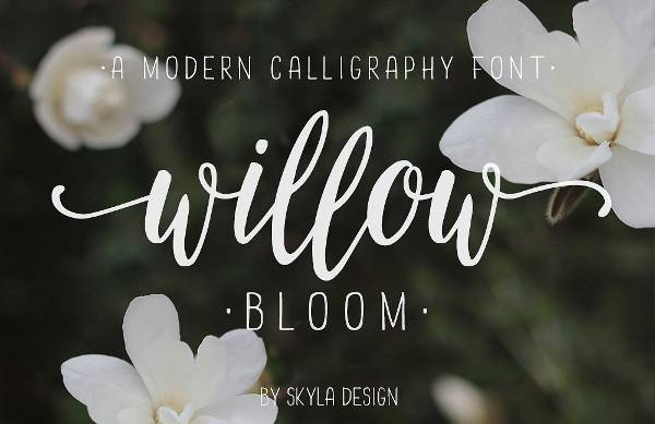 modern calligraphy number font