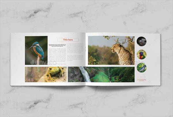 Nature Landscape Brochure