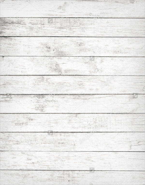 white wood texture. Old White Wood Texture