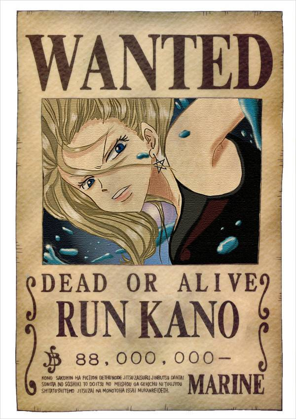 retro one piece wanted poster1