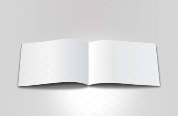Simple Blank Brochure