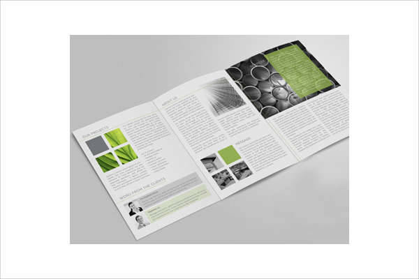 Trifold A4 Brochure