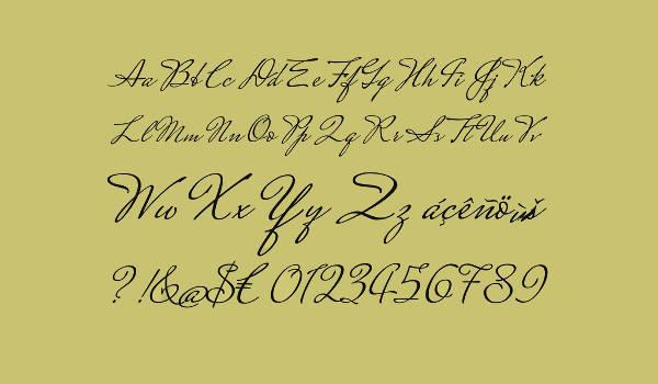 Typography Cursive Alphabet Font