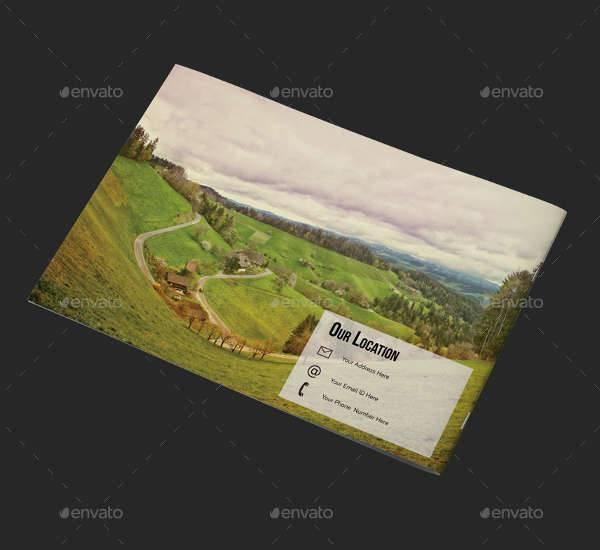 Business Travel Brochure Portfolio