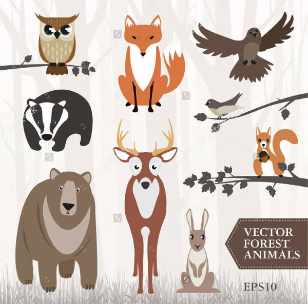 Forest Animal Illustration