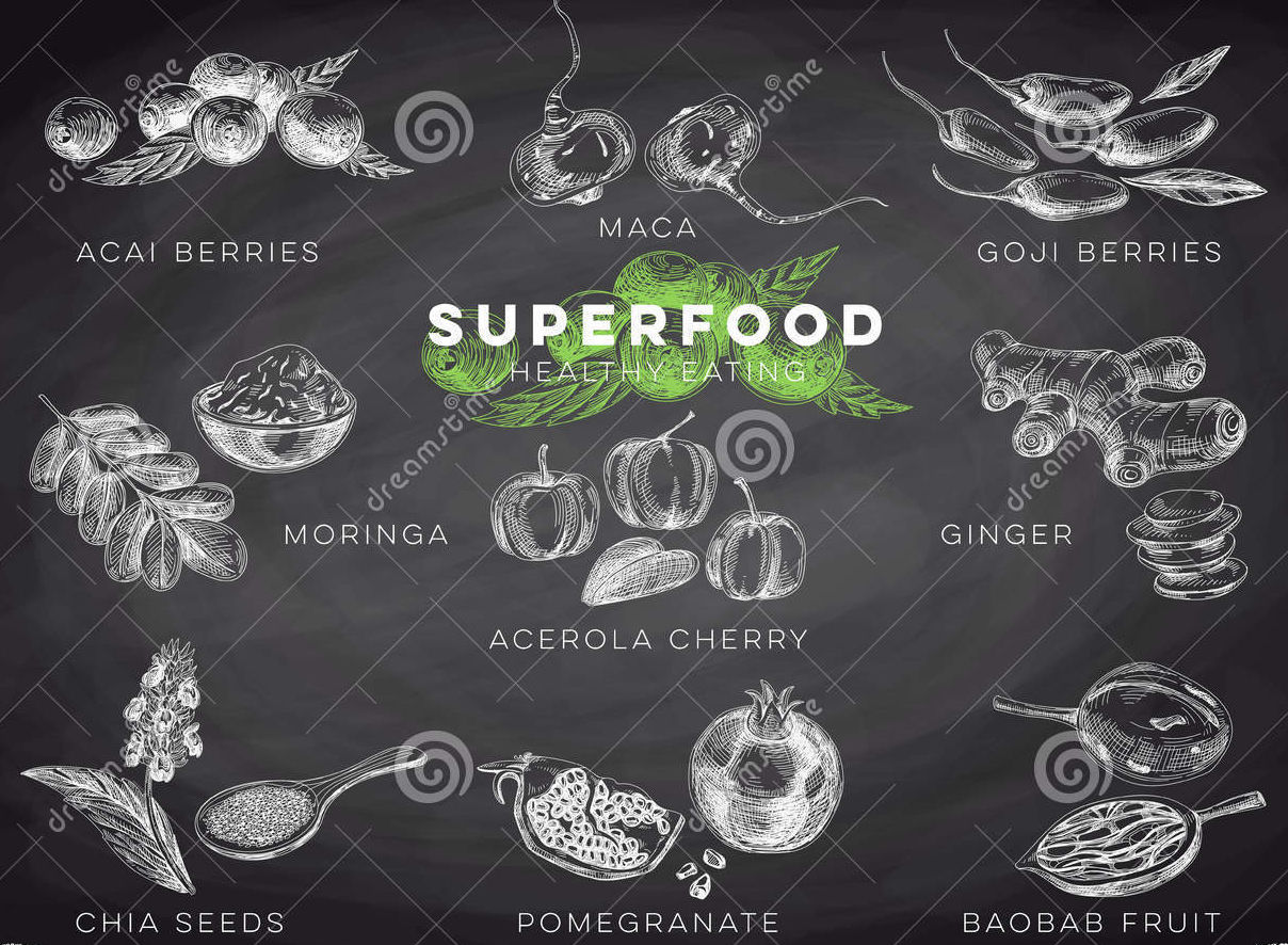 hand drawn superfood illustration