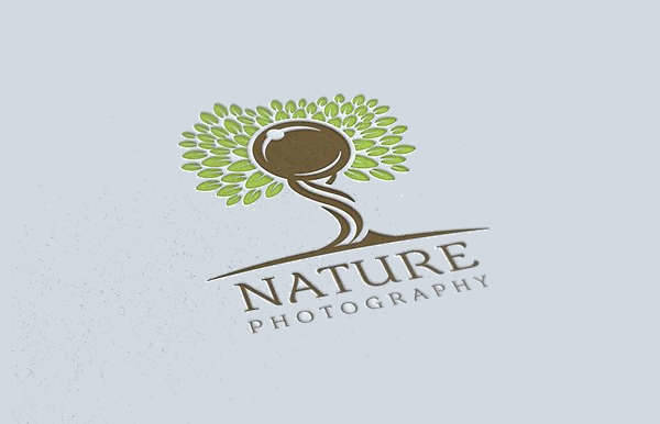 Nature Photography Tree Logo