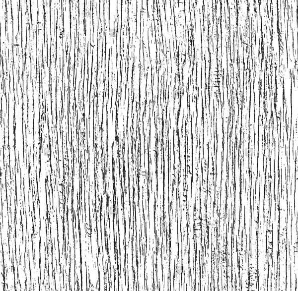 vector grunge wood texture