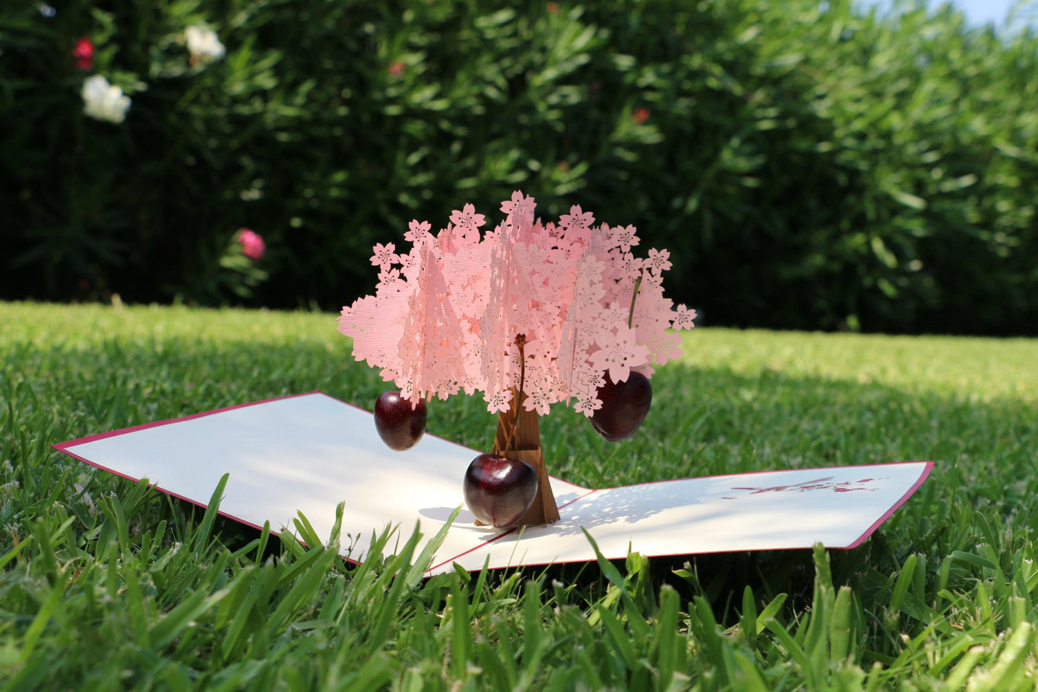 Pink Tree Popwishcard