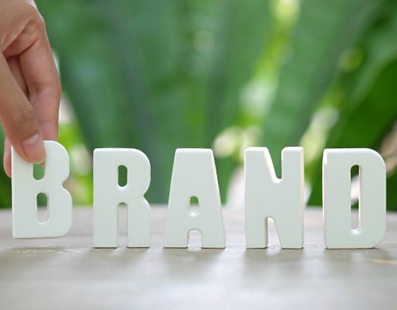 Brand Startup Story