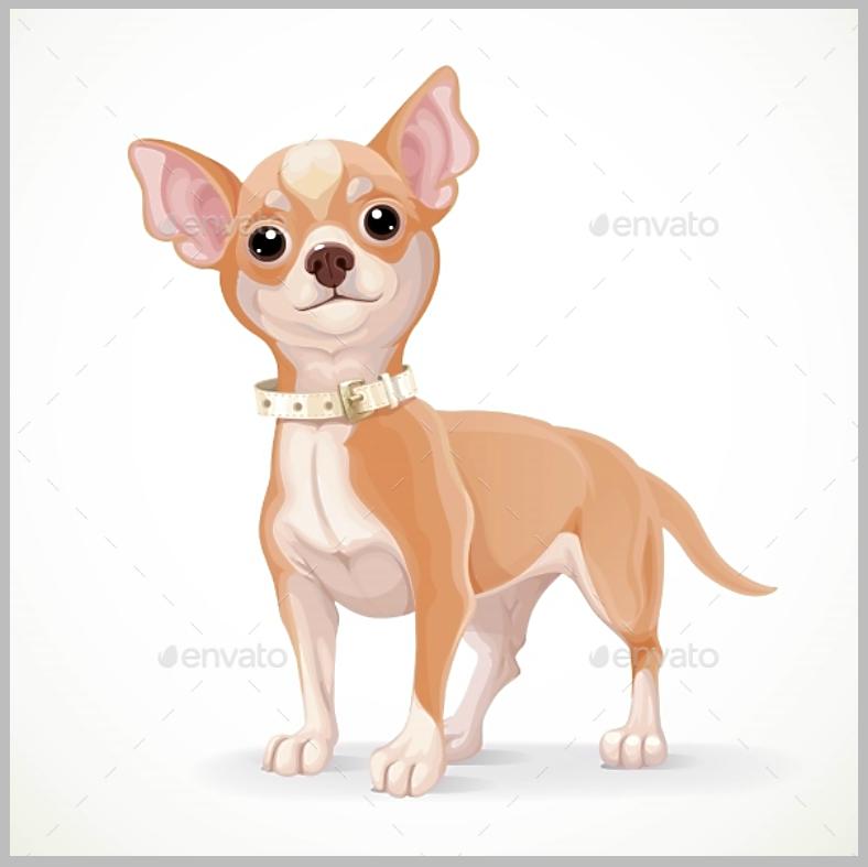 dogillus003