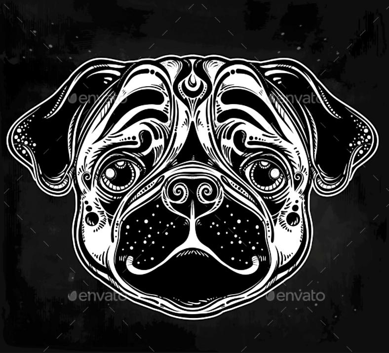 dogillus005