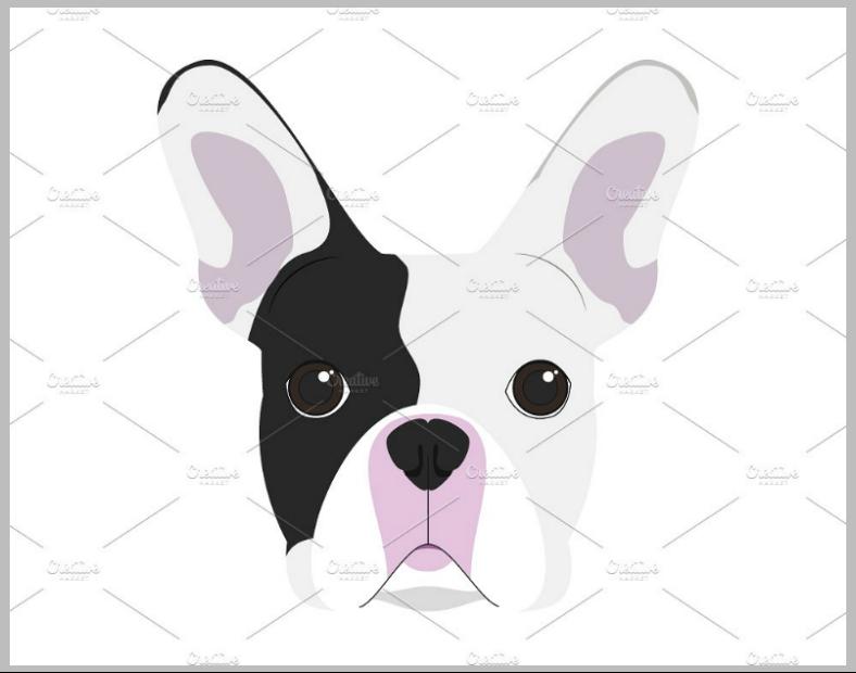 dogillus007