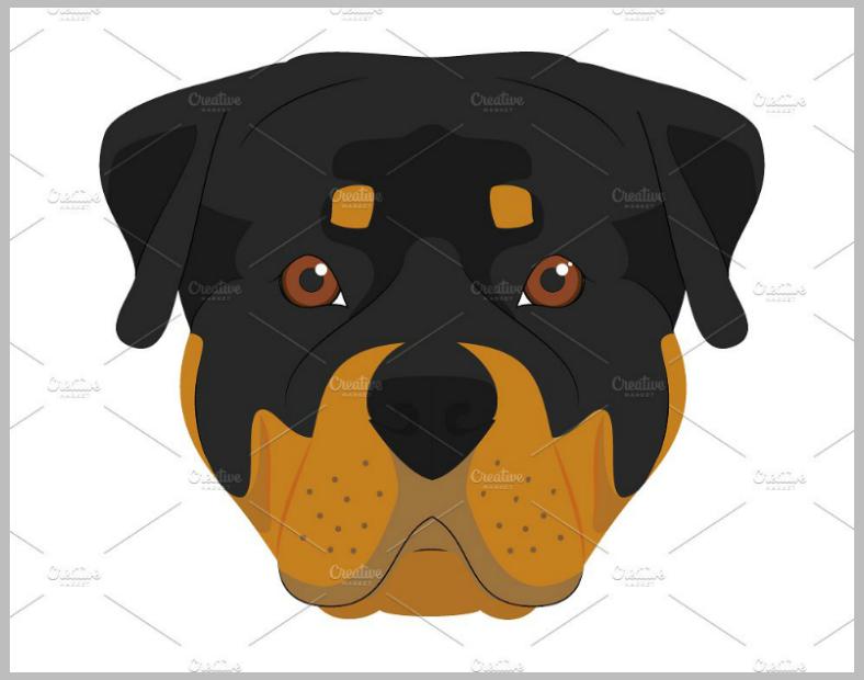 dogillus008