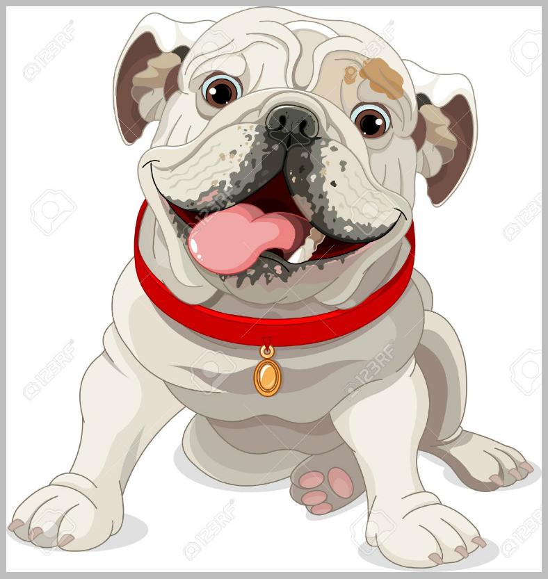 dogillus013
