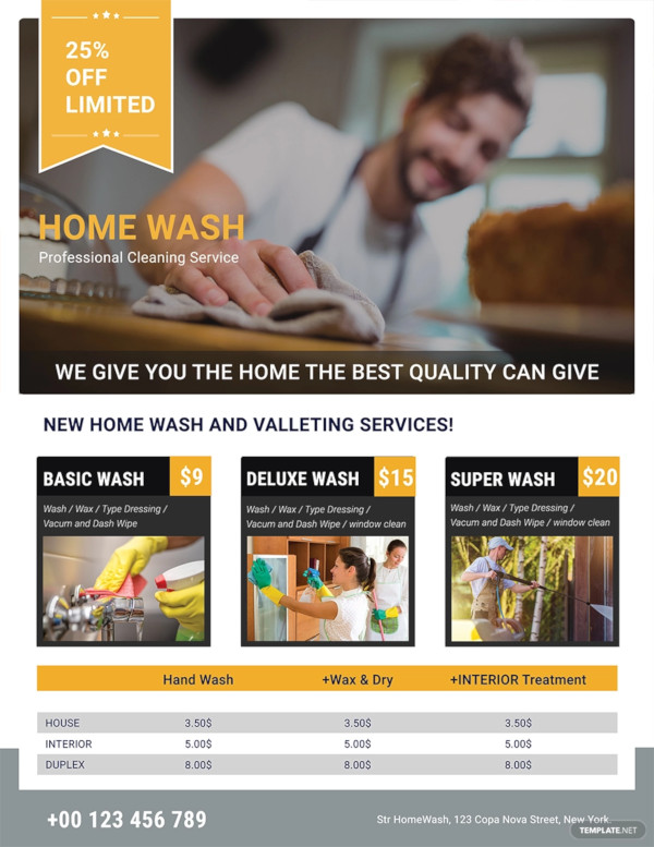 professional cleaning services flyer